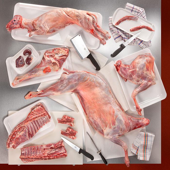 agnello-capretto-carni-per-macellerie-ristoranti
