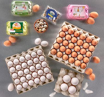 uova vendita distribuzione macelleria ristoranti sfuse confezionate