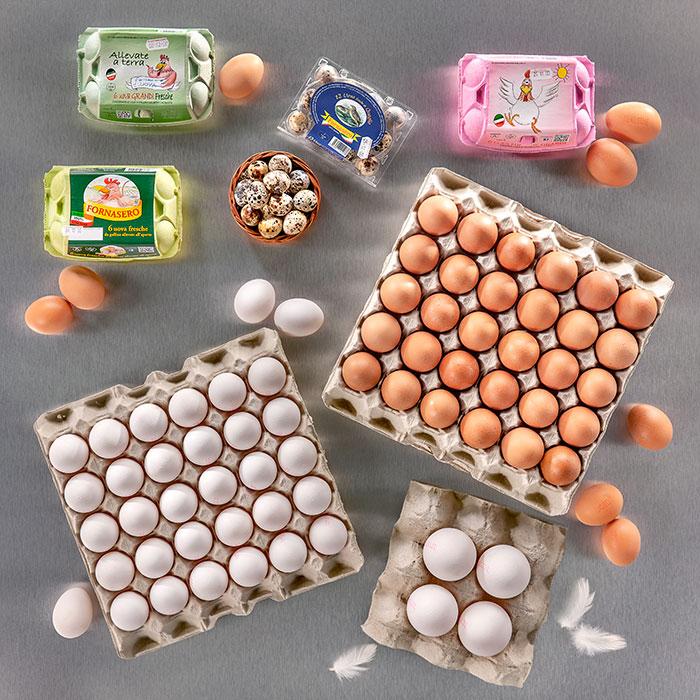 uova-vendita-sfuse-confezionati-macelleria-ristoranti